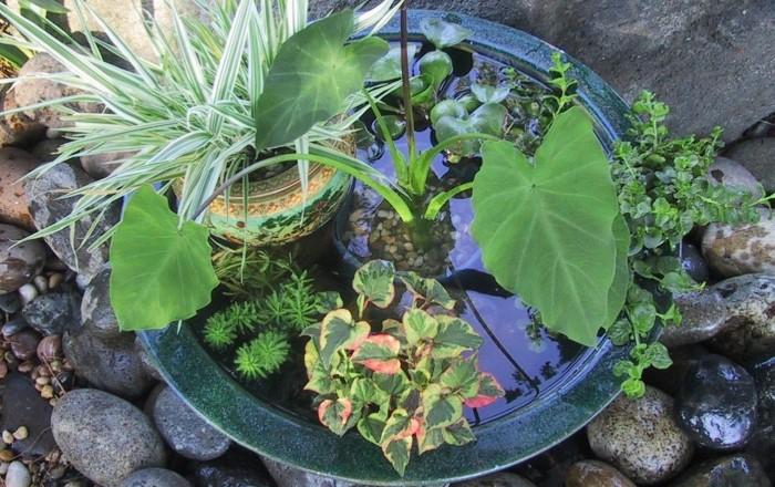 Маленький пруд на участке. Идеи для двора в деревне