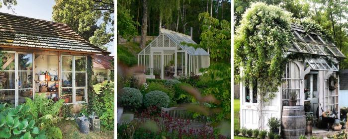 Теплица и сарай в дизайне двора частного дома