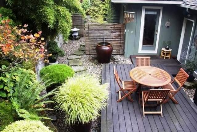 озеленение маленького двора частного дома фото