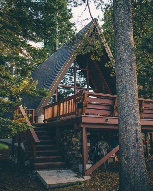 дома в стиле шале фото в лесу