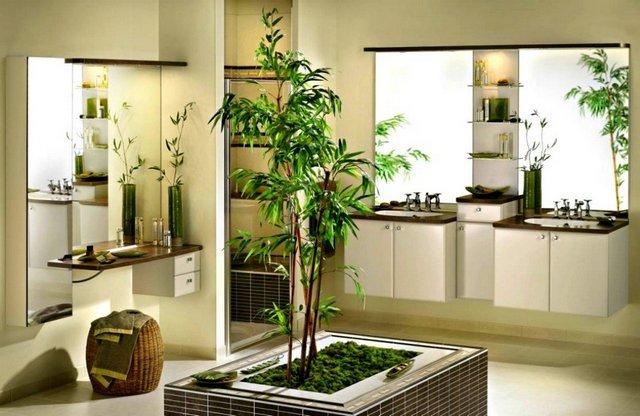 комнатный бамбук в интерьере фото пример