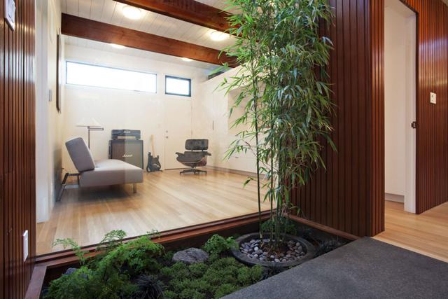 комнатный бамбук в интерьере пример