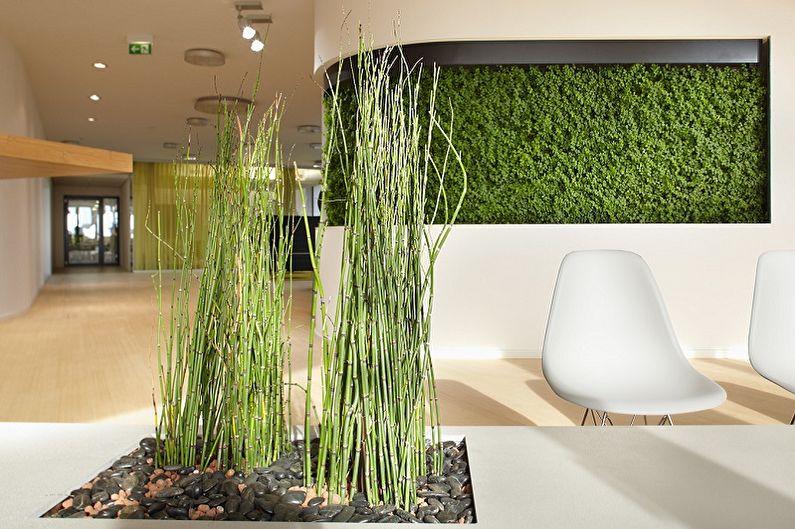 комнатный бамбук в интерьере вертикальное озеленение